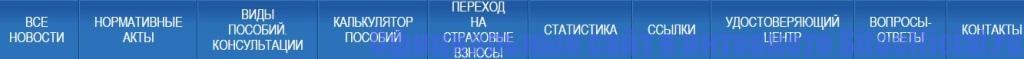 Официальный сайт ФСС - Разделы