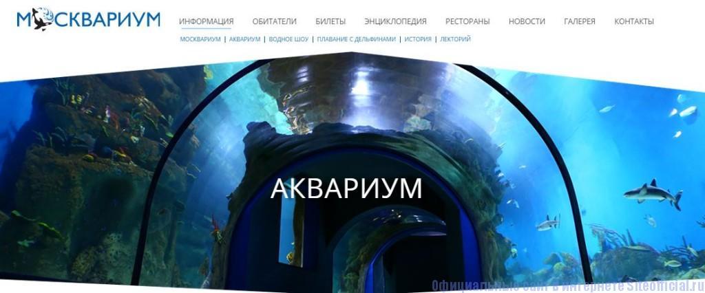 """Москвариум ВДНХ официальный сайт - Вкладка """"Информация"""""""