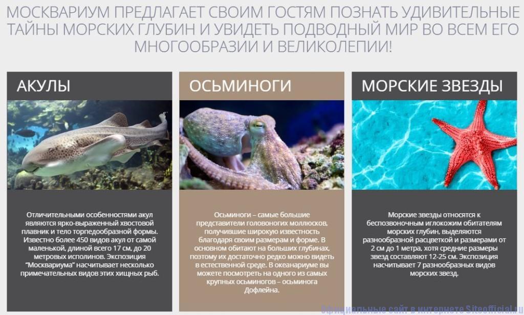 """Москвариум ВДНХ официальный сайт - Вкладка """"Обитатели"""""""