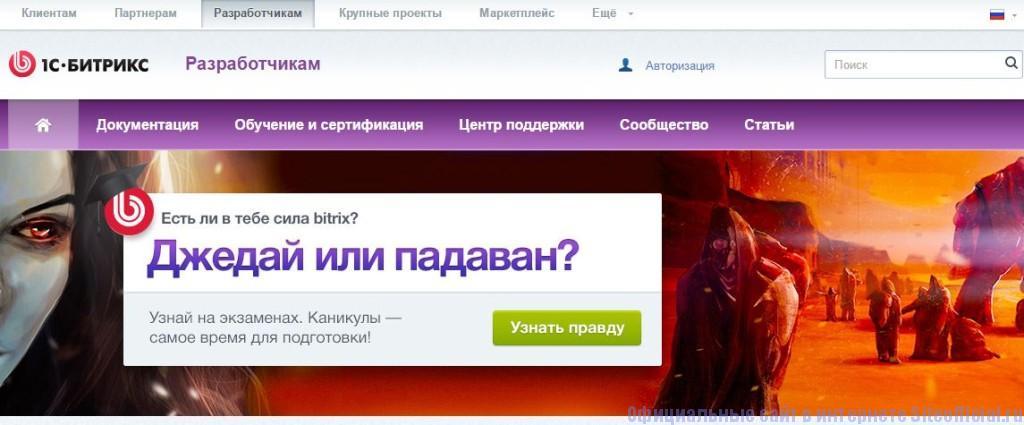 """Битрикс официальный сайт - Вкладка """"Разработчикам"""""""