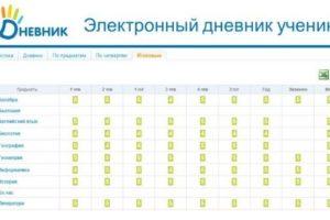 Электронный дневник школьника