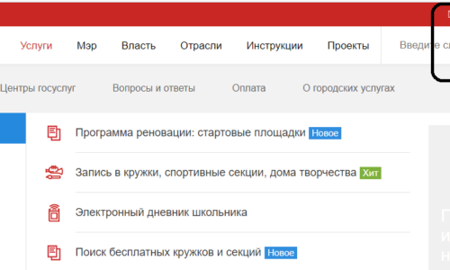 Внешний вид официального сайта мэра Москвы