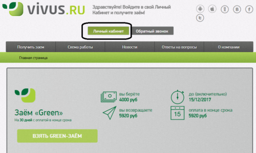 Внешний вид официального сайта Вивус