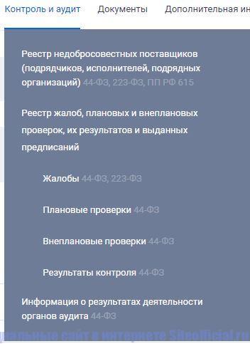 """Вкладка """"Контроль и аудит"""" на официальном сайте госзакупок"""