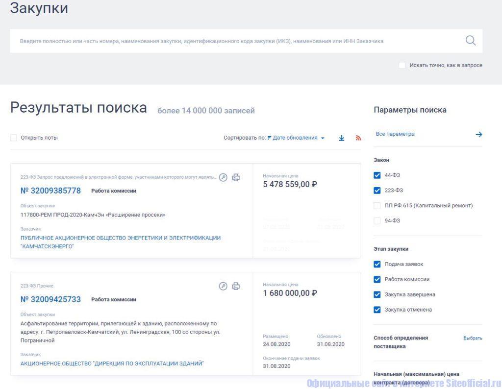 """ЕИС Госзакупки - Вкладка """"Закупки"""""""